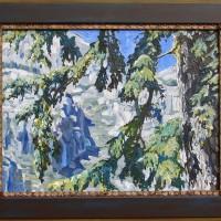 Tsuga mertensiana '5.10'/ Mountain Hemlock