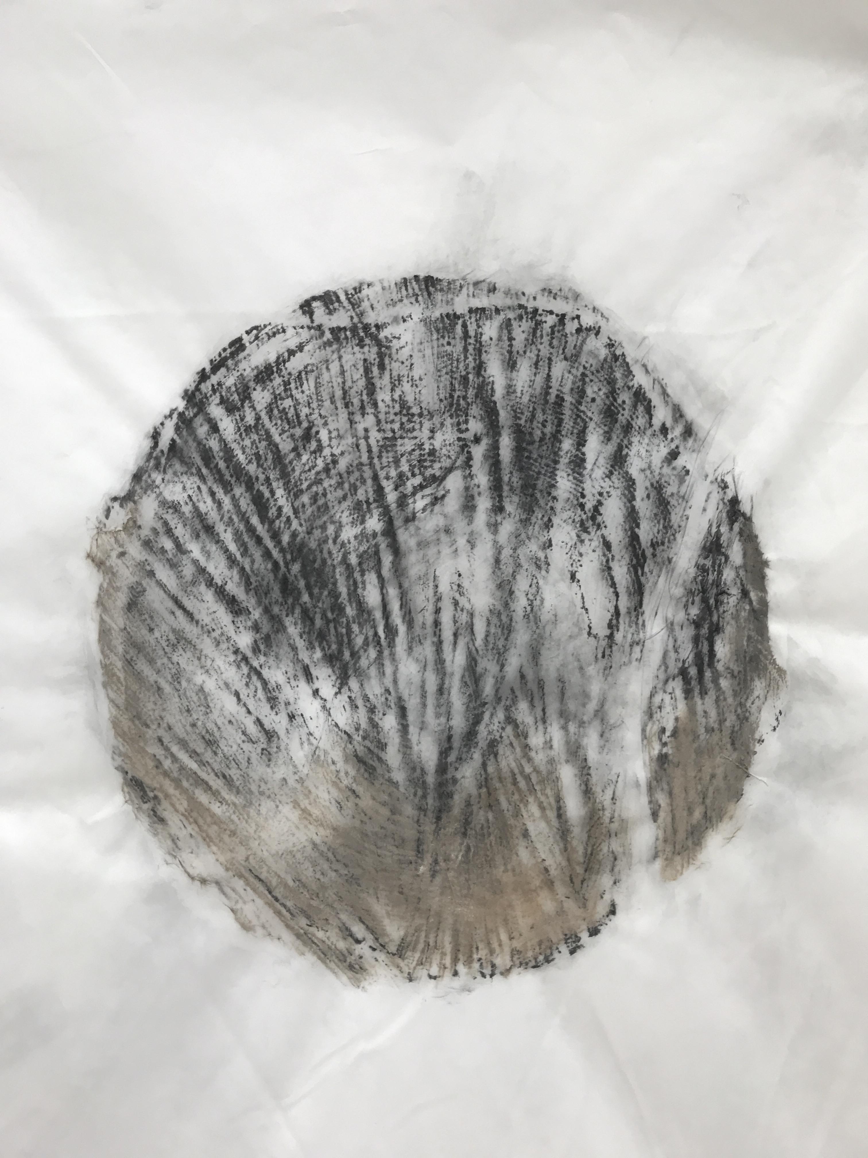 Carbon: Smoke Pine 2