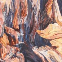 oil painting of Bristlecone Pine
